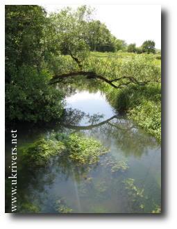 River Test near Mottisfont, Hampshire