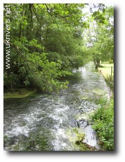 River Test, Mottisfont, Hampshire