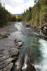 North Fork, Flathead River, MT